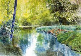 Le calme d'une rivière