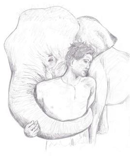 Éléphant et son cornac