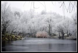 Parc nord des Ulis en hiver (photo perso)