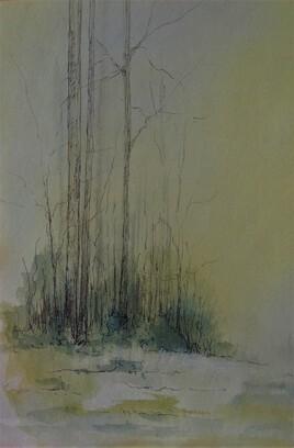 Forêt 15