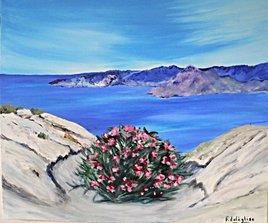 laurier rose face à la mer