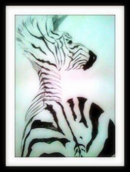 Ceci n 'est pas un zebre