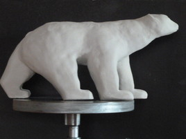 Feu l'ours blanc