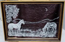 Familles chevaux dans le pré