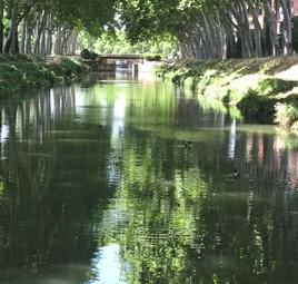 Le canal du midi.... à Toulouse