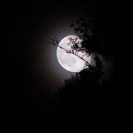 Photo encore une lune