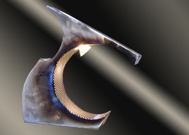 ptérotactil