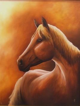 portrait arabe