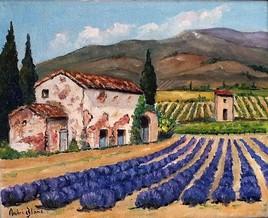 mas de Provence avec vignes et lavande