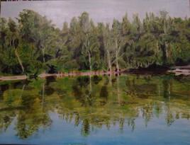 L'étang 1