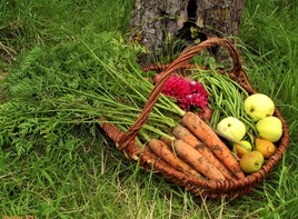 panier de légumes naturels..