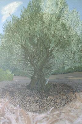 olivier chant
