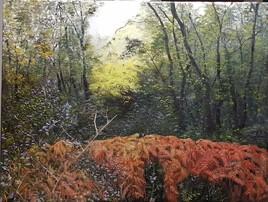 Forêt de Longeville