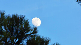 Lune - 01