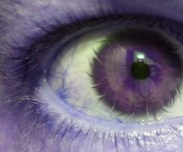 Mon oeil !!!