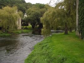 Verdure bretone