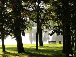 A l'ombre du parc