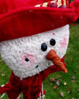 "Photo ""Feliz Navidad"""