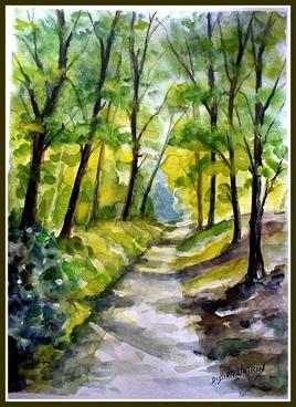 Mon premier sois-buis à l'aquarelle (Forêt de Rambouillet)