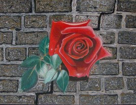 la rose urbaine