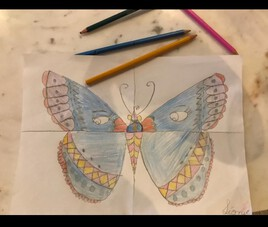 Cours sur la Couleur: le papillon