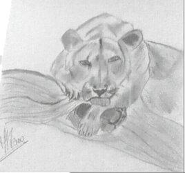 Le Lion!