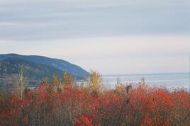 le Saint Laurent , entre Saint Siméon et rivière du Loup