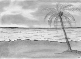 plage cocotier 1