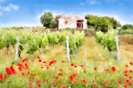 Paysage de Provence Vignes et cabanon