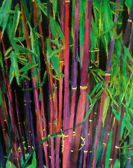Bambous à cannes rouges