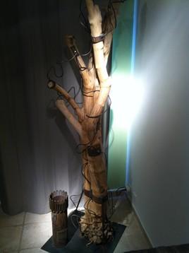 Porte manteau bois flotté
