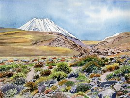 2019-13 Chili Atacama