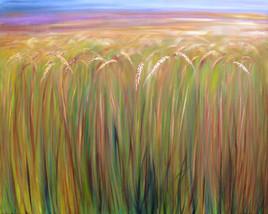 blé sur pied