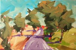 paysage 9