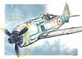 FW190 Flight