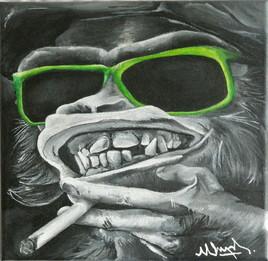 Primate & orthodontie