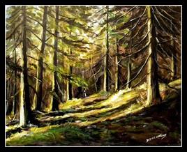 Forêt de pins  (un rappel)