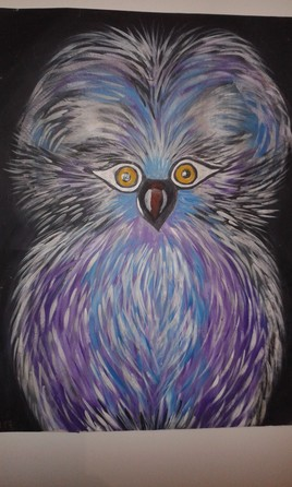 Hibou colorer