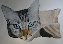 chat à l'aquarelle