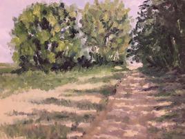 chemin dans un bosquet en été