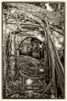 La prison emprisonnée 10 (Petit Canal - Guadeloupe) tirage dibond® 40 x 60 cm