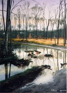 forêt de Gremecey