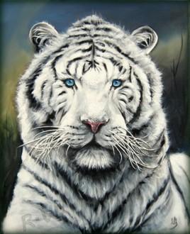tigre tigresse