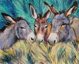 mes ânes