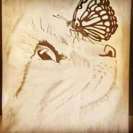 Le Chatpillon