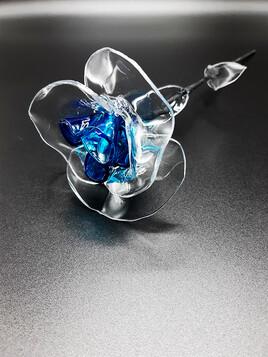 Rose éternelle bleue turquoise