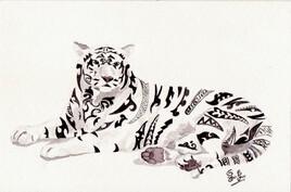 Tigre maori