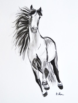 La course du cheval