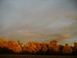 ciel de seyre 2005