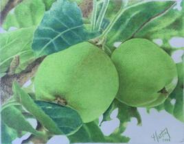 2 pommes